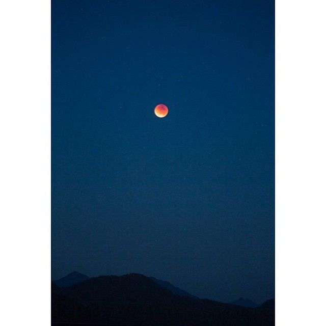 It was actually clear in #Tofino for us west coasters to experience the lunar eclipse & supermoon last night! Hope you all had a chance to experience the magic 🌙 📷 @achilts
