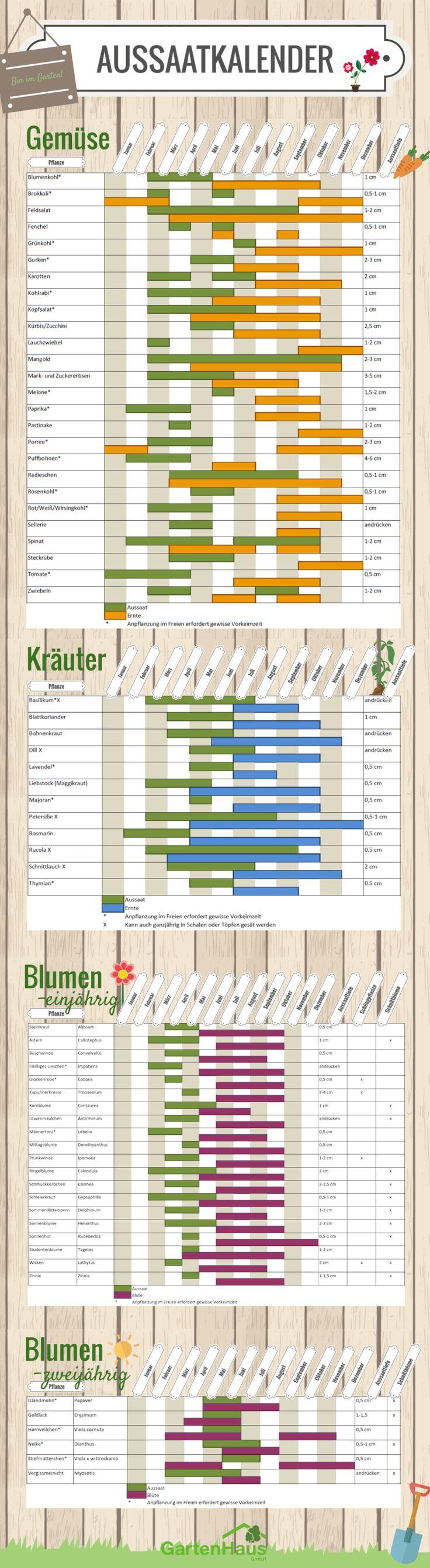Aussaatkalender 2018 Was müssen Sie wann pflanzen
