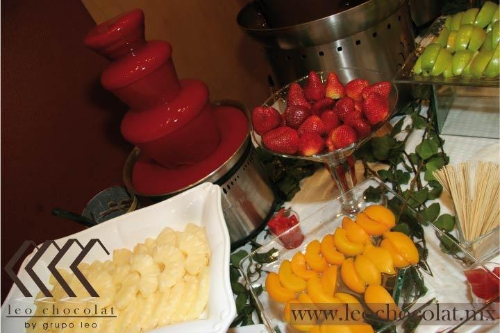 FUENTE DE CHOCOLATE Y CHAMOY EN HOTEL CAMINO REAL DEL PEDREGAL. - Fuentes de chocolate Renta y Venta, Chamoy, Queso México DF | Mesa de Dulces y Cockteleria