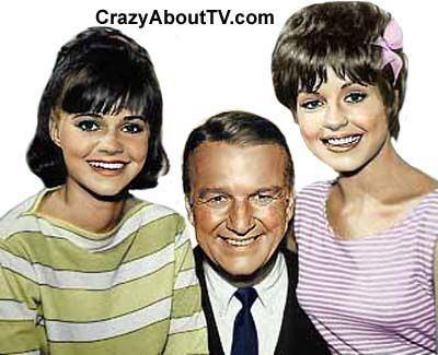 The Gidget TV show was a 30 minute comedy series on ABC about a teenaged girl who lived in southern California with her widowed father who was a college professor. Gidget spent as much time as possible at the beach, surfing, or just with her friends. Every week she would get herself into some teenage jam and then spend the rest of the show finding a way ou