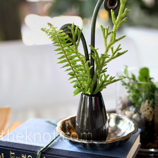 Fern and Book Centerpieces -- holy crap, lycophytes and pteridophytes only!!!!! I'm in love