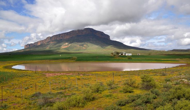 Giberg Mountain in the background. Hiking trails, bushman paintings, 4X4,