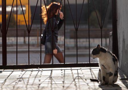 Sun day Photo by Vladimir Cheberkus — National Geographic Your Shot
