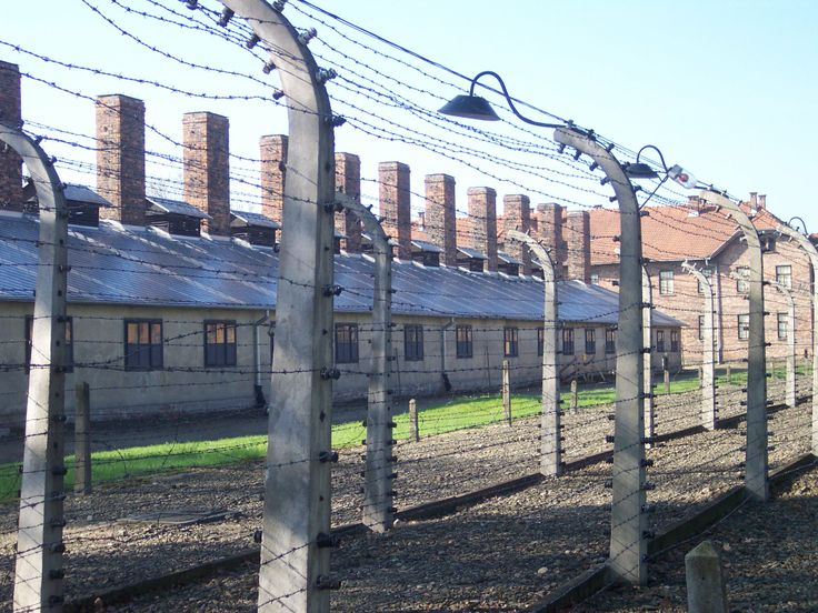 Barbered wire near by the entrance of Auschwitz I