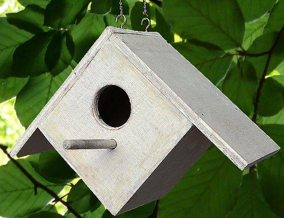 Costruire un rifugio per uccelli: strumenti e procedimento #rifugiouccelli #casettauccelli #faidate #DIY #realizzazionilegno #costruireconlegno #ideecreative #legno