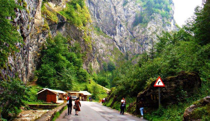 Dacă nu aveți planuri clare pentru vara aceasta în ceea ce privește vacanța, vă recomandăm să luați în calcul și câteva călătorii pe care puteți să le faceți cu mașina prin România