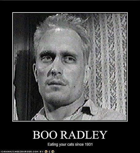 boo radley as a mockingbird in to kill a mockingbird by harper lee Harper lee's only book for some time was to kill a mockingbird and it was   down the road rumoured to house the phantom–like boo radley.
