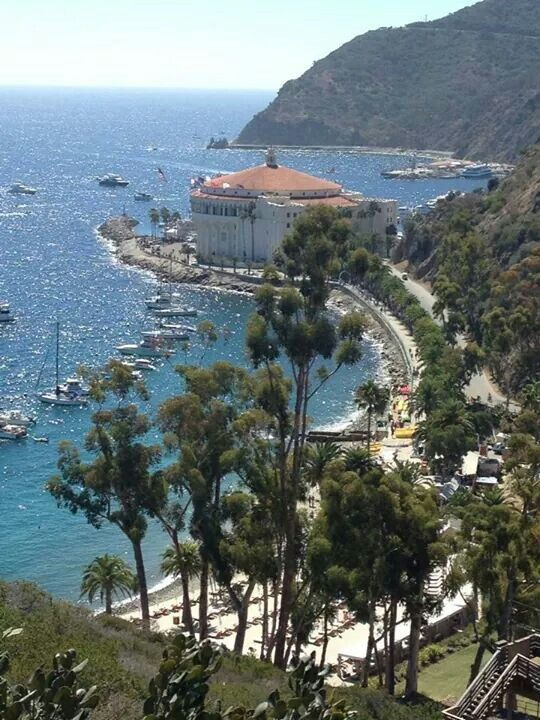 17 best images about catalina island on pinterest unique for Catalina bay
