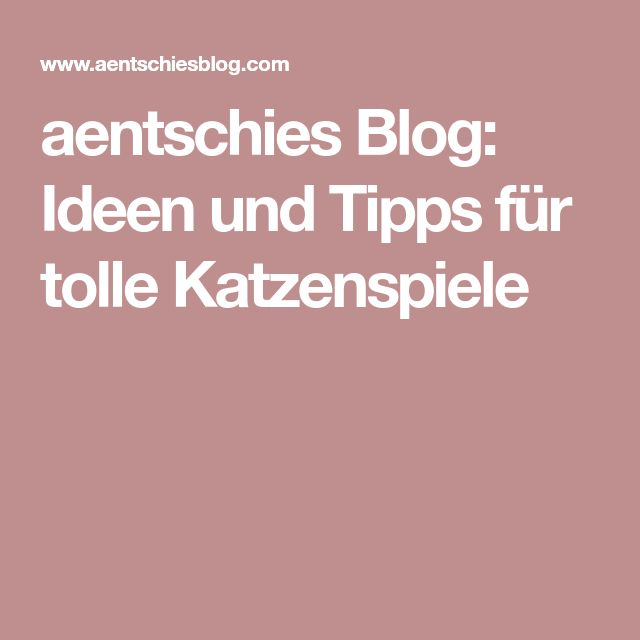 aentschies Blog: Ideen und Tipps für tolle Katzenspiele
