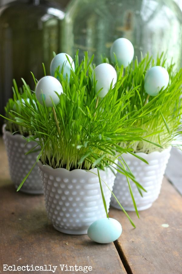 Grow Your Own Spring Grass Centerpiece www.eclecticallyvintage.com Faites votre propre centre de table de Pâques avec un pot et de l'herbe à chat