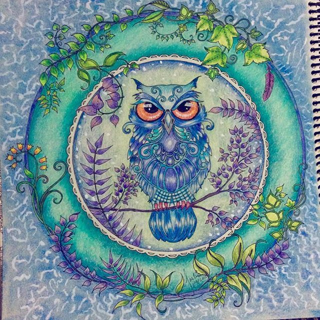 142 Best Enchanted Forest Owl In Circle Images On