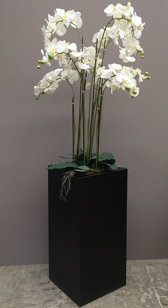 Floor Standing Artificial Orchid In Tall Black Square Planter 1 8m     Floor Standing Artificial Orchid In Tall Black Square Planter 1 8m