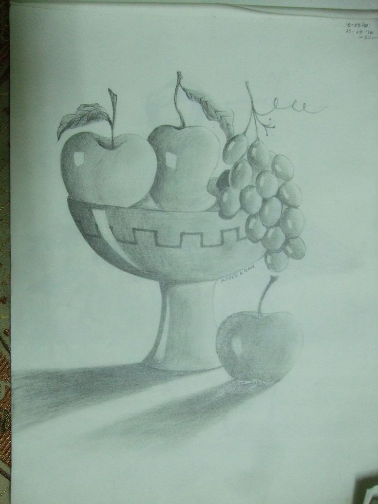 Using 2B 4B and 6B pencil.. reproduced from Learning book - Fruits , Shading & shadows - highlights on objects - rendering technique - smudge - smooth shading
