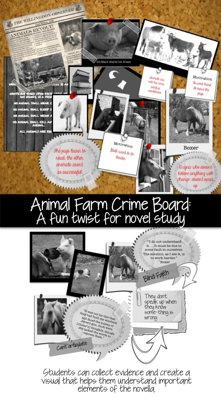 17 best ideas about animal farm novel animal farm put a fun twist on studying animal farm a csi crime board
