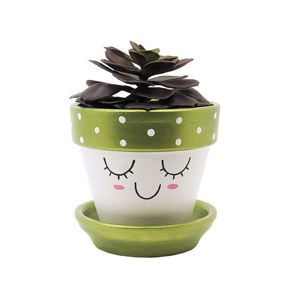 Best 25 succulent gifts ideas on pinterest super happy for Indoor plant gift ideas