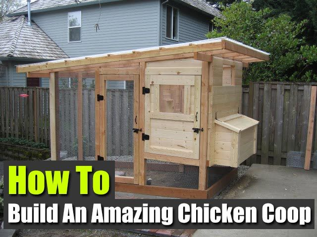 Duck coop plans free woodworking projects plans for How to build a duck shelter