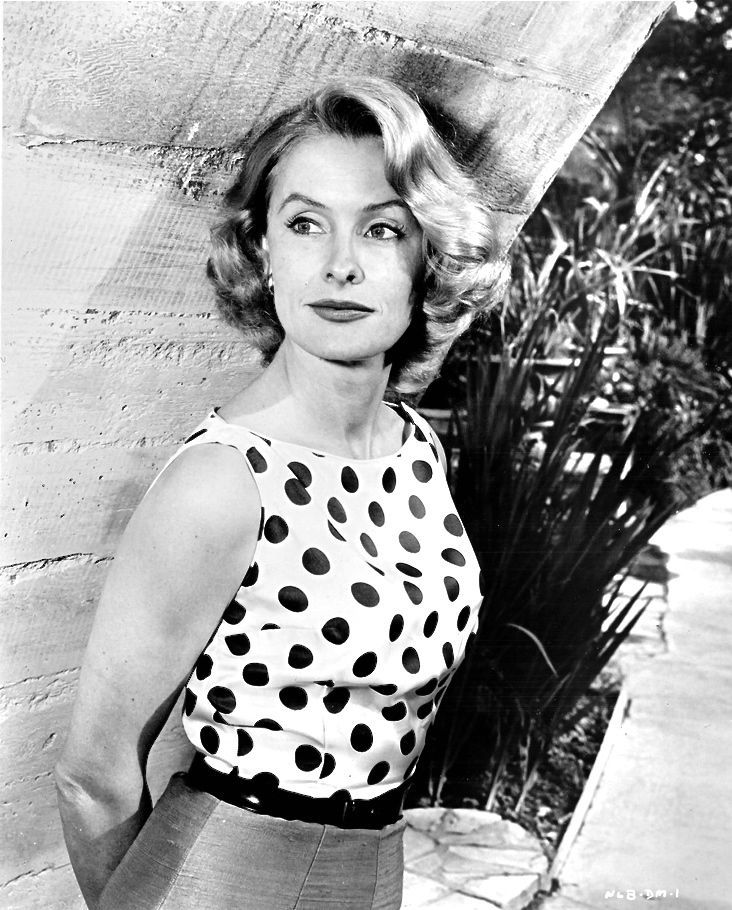 1950-1959 DINA MERRILL b/w glamour period  photo (Celebrities & Musicians)