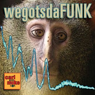 In Ep 19: Funk Radio: Wegotsdafunk Carl and Mike find themselves in a funk as they wrestle with not wanting to do what they did, but not knowing what to do next.  The funk extends into politics brought on by the Koch Brothers plans to spend a billion dollars on the next election. Finally, the funk lifts when the conversation turns to people living in passion. #funk #passion #moody