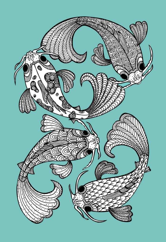 Koi Carp adult colouring
