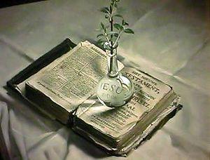 Leuk idee: oude bijbel opzoeken, op de sitetable, met een mooi bloemetje etc. erbij