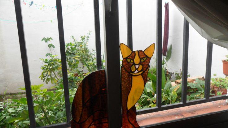 gato de cristal.