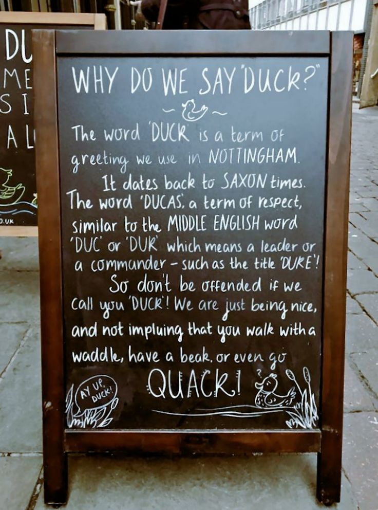 Why do we say 'duck'?