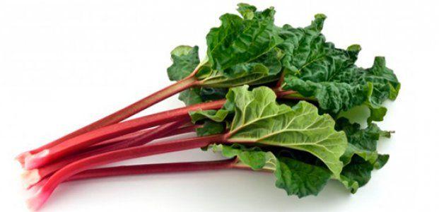 Ревень – польза и полезные свойства ревеня для пищеварения. Вред  и противопоказания