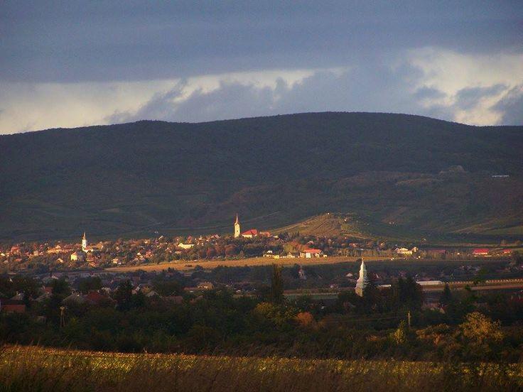 Tállya - Hungary  (Fotó: Ballók Tímea)
