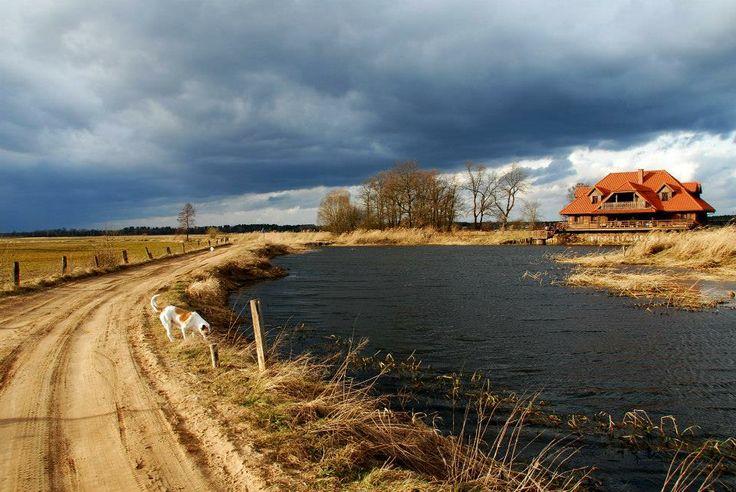 """""""Swans"""" Riverside Manor in Kiermusy (Stanica Rzeczna Łabędzie)"""