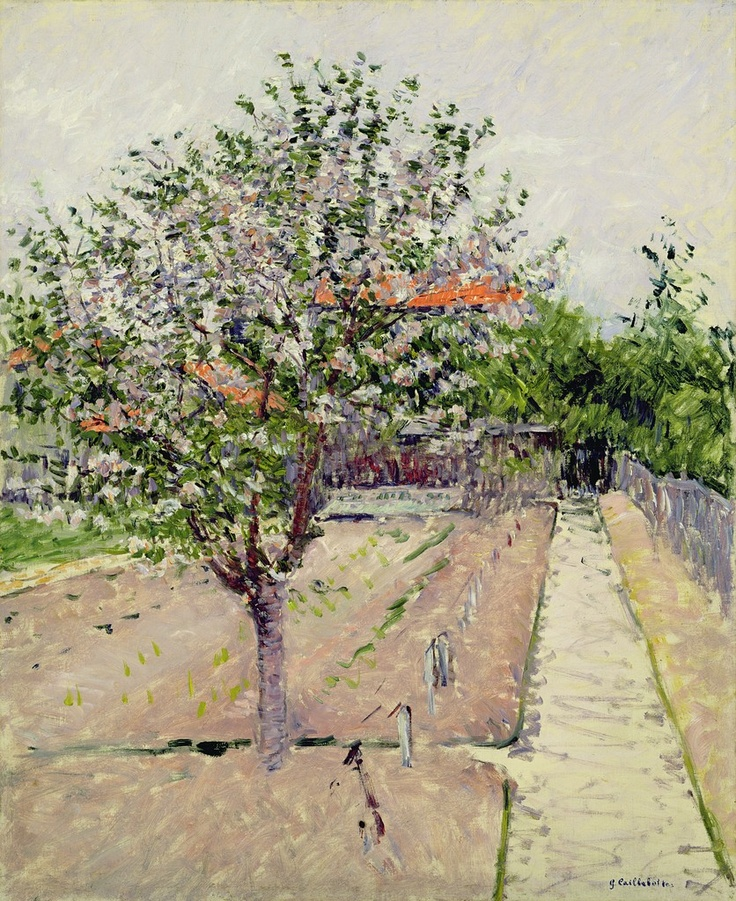 Apple Tree in Blossom, by Gustave Caillebotte