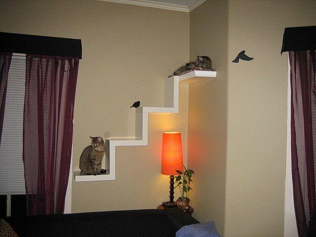 Ikea Lack Shelf made into cat furniture. I like this idea. It's clean.