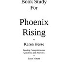 """""""Phoenix Rising"""" is a fictional book about a nuclear disaster in America. The teens in this story face many important issues. The student copy prov..."""