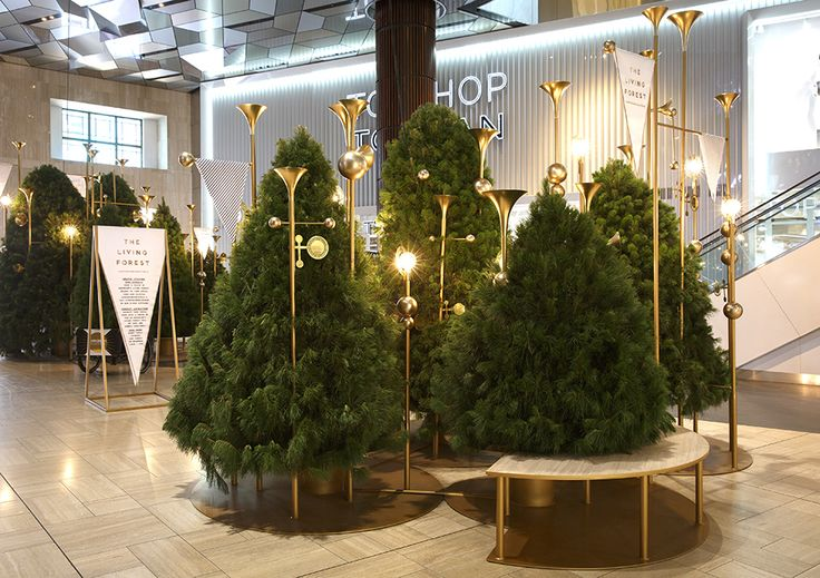 A dense forest of live Christmas trees greeted customers at the Lonsdale St entrance. This living forest in the heart of the CBD became a place to be immersed and lose oneself in.
