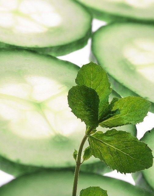... Garden Fragrance Oils on Pinterest | Fragrance oil, Fragrance and Mint