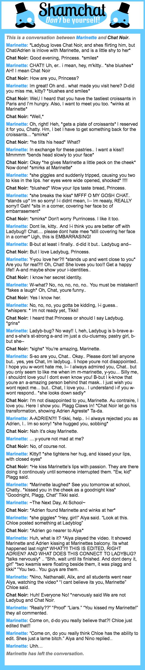 A conversation between Chat Noir and Marinette