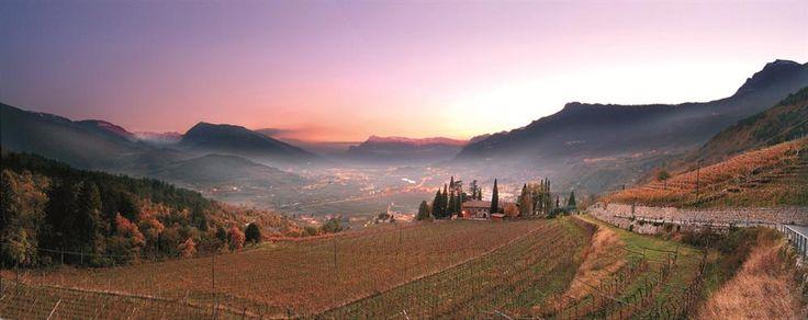 Vallagarina, Rovereto, Italia Land of Marzemino!