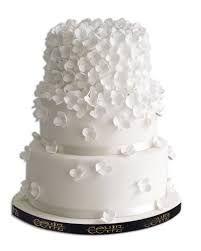 çiçekli modern pastaların resimleri ile ilgili görsel sonucu