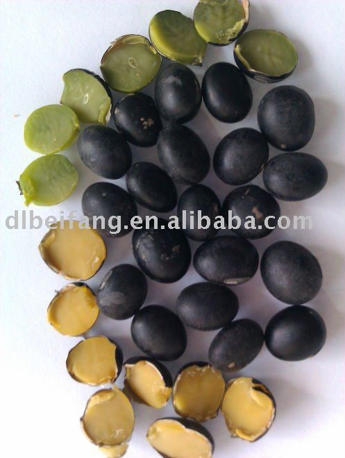 Image result for soybean craft