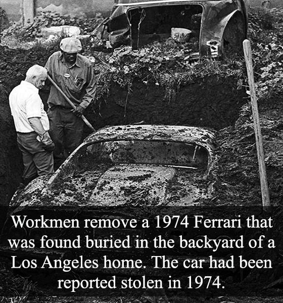12 Best Images About Crazy And Unbelievable Facts On