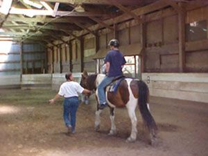 Veterans Equine Assisted Therapy Program