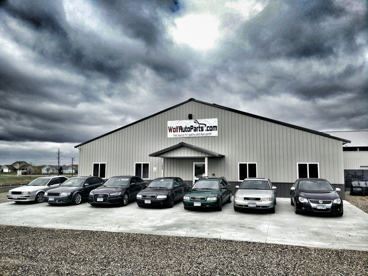If you work at Wolf Auto you better drive an Audi or VW!  #Audi #Volkswagen #WolfAuto #WolfAutoParts