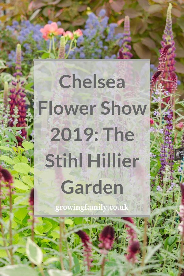 Exploring The Stihl Hillier Garden At Rhs Chelsea Flower Show