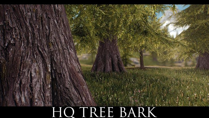 Skyrim SE Mods: HQ Tree Bark