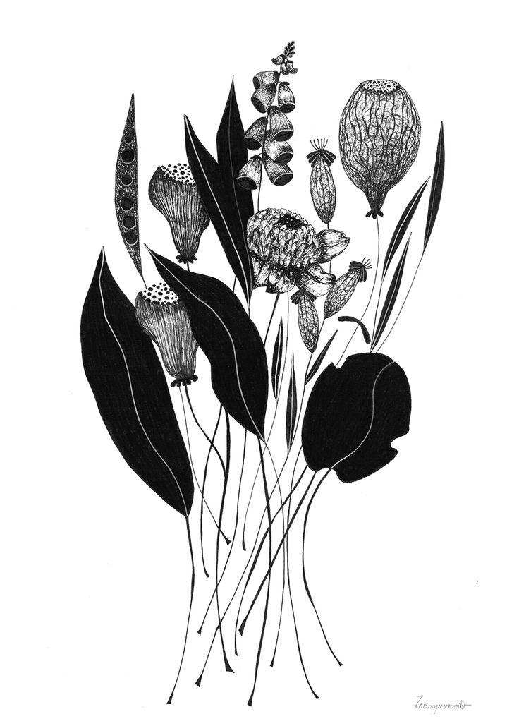 Ink on paper. Illustrations. Bouquet. http://www.iwonaszczepanik.com/