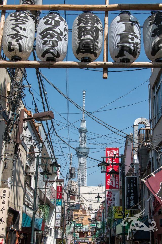Japan / Tag 1 / Tokyo / Willkommen im Wahnsinn