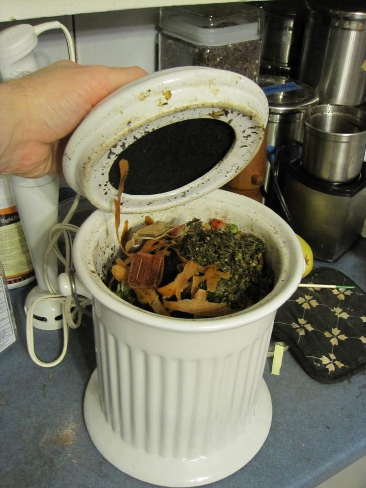 tip reducing the ick factor in composting with a countertop compost bin