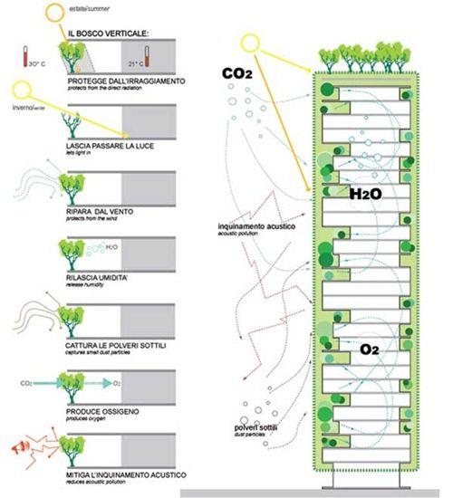 El Bosque Urbano Vertical de Stefano Boeri: Bosco Verticale | Interiores