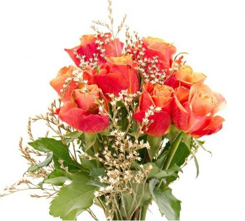 #Party Girl For someone who is flamboyant and loves life, this makes for the perfect gift – vase not included.#Anniversary #Flowers #Roses.http://bit.ly/1Esn3uE
