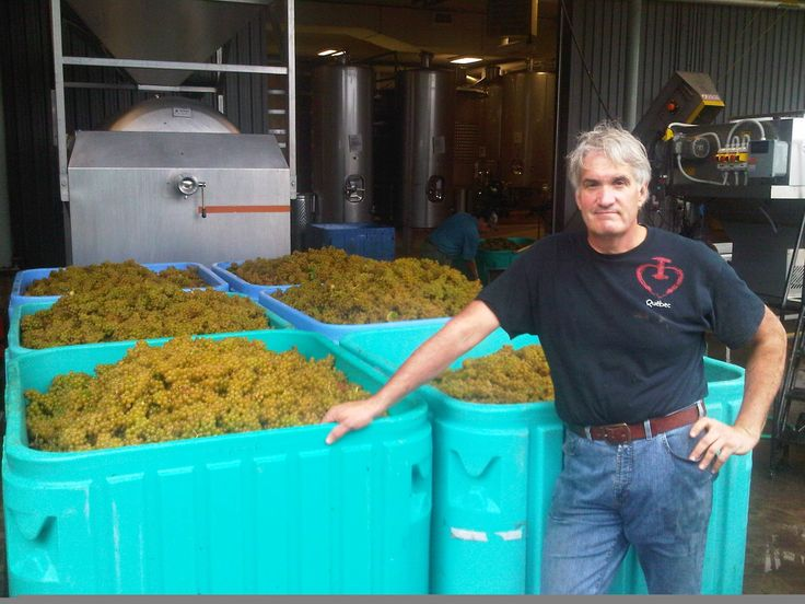 Thomas Bachelder makes wines in three countries - Canada (Niagara), USA (Oregon) and France (Burgundy), where he contracts with other producers for space in their cellars. Here, Thomas poses in the facility he uses in Niagara.