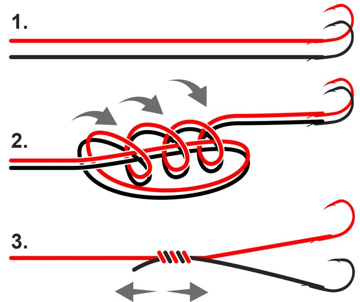 montage wishbone